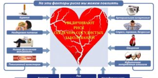 Сердечно-сосудистые заболевания: факторы риска и профилактика